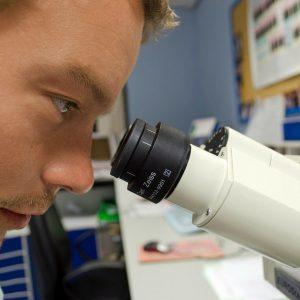 scienze-biologia-ripetizioni-verona-lezioni-online-fucina-cervelli